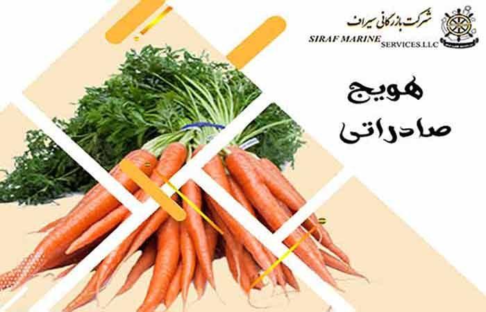 صادرات هویج