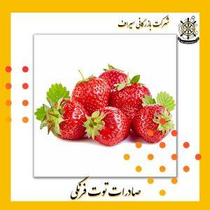 توت فرنگی صادراتی ایران